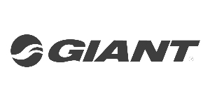 Giant Bikes